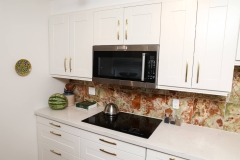 Toronto Condo Renovation backsplash onyx